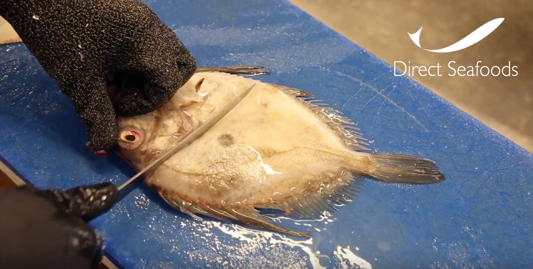 How to fillet a John Dory